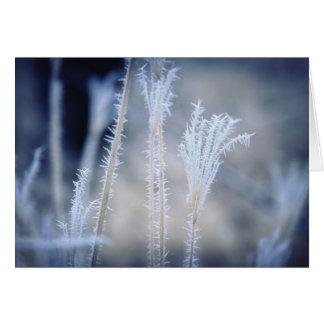 Kall per vintern som glaseras på en julkort hälsningskort