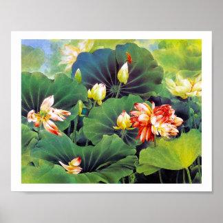 Kalla härliga kinesiska lotusblommar blommar grön poster