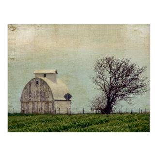 Kalona Iowa fält och ladugård med träd Vykort