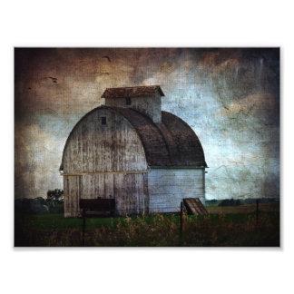 Kalona Iowa vitladugård med fåglar Fototryck