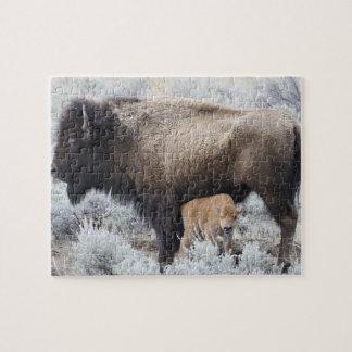 Kalv för kosjukvårdBison, Yellowstone 3 Pussel