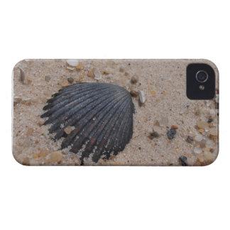 Kammussla på strandblackberry boldfodral iPhone 4 Case-Mate fodraler
