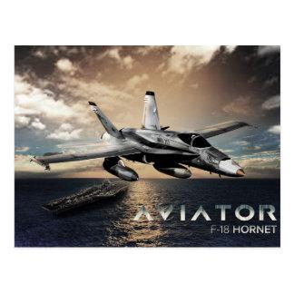 Kämpejet för bålgeting F-18 Vykort