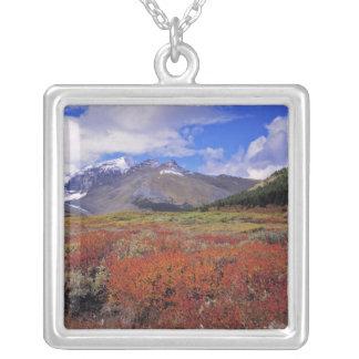 Kanada Alberta, Banff NP. Huckleberriesblom Silverpläterat Halsband