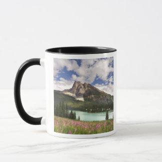 Kanada British Columbia, Yoho nationalpark. 3 Mugg