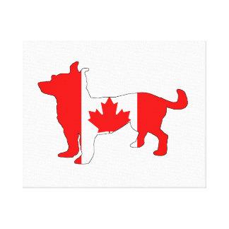 Kanada Chihuahua Canvastryck