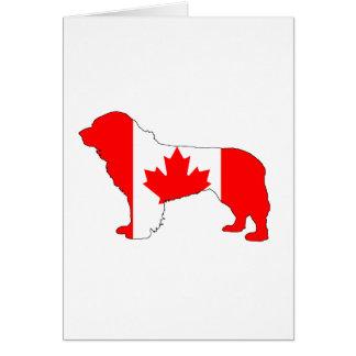 Kanada Newfoundland hund Hälsningskort