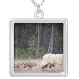 Kanada Northwest Territories, underbar slav- Lake. Halsband Med Fyrkantigt Hängsmycke