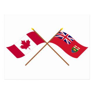 Kanada och Manitoba korsad flaggor Vykort