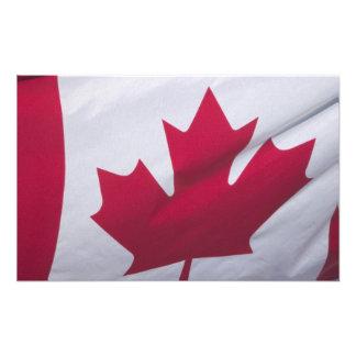 Kanadensisk flagga fotografiska tryck