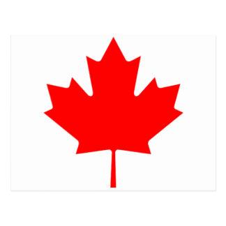 Kanadensisk lönnlöv vykort