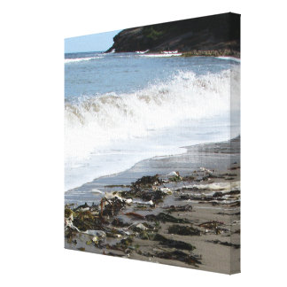 Kanfas av risers strand Nova Scotia Canvastryck