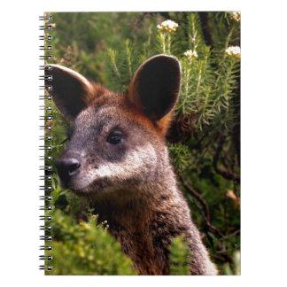 Känguru Anteckningsbok
