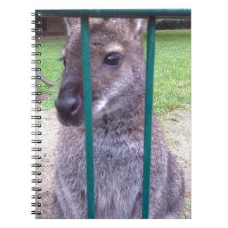 Känguru bak pubar anteckningsbok