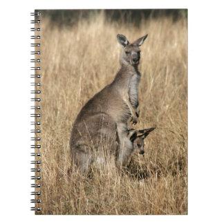 Känguru med babyen som är känguruunge i påse anteckningsbok med spiral