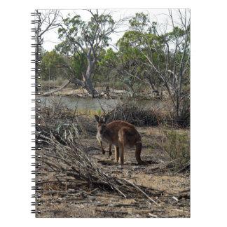 Känguru under tiden på Billabongen, Anteckningsbok