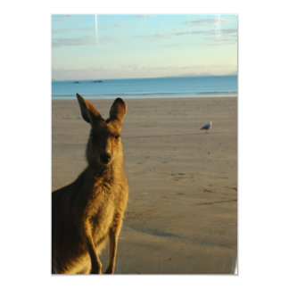 Kängurufotoinbjudan 12,7 X 17,8 Cm Inbjudningskort