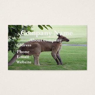Känguruvisitkort Visitkort