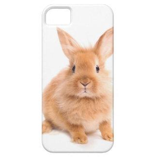 Kanin iPhone 5 Fodral
