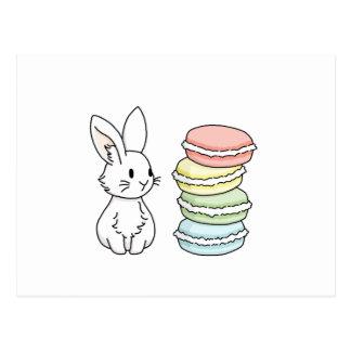 Kanin med Macaroons Vykort