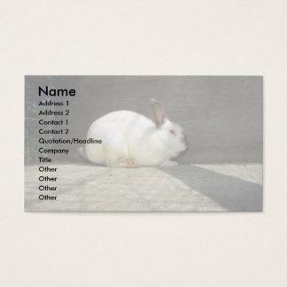 Kanin Visitkort