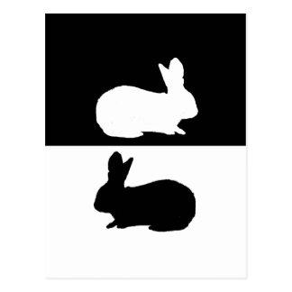 kanin vykort