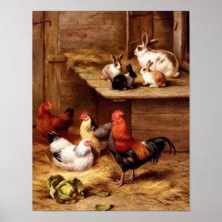 Kaniner för boskap för husdjur för kanintupphönor poster