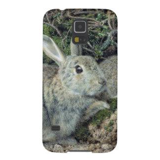 Kaniner Galaxy S5 Fodral
