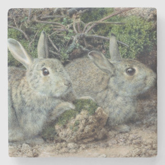Kaniner Stenunderlägg