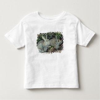 Kaniner T Shirt