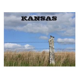 Kansas hök på en limefruktstenstaketstolpe. Vykort