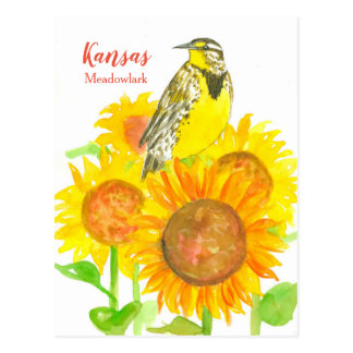 Kansas Meadowlark solrosor Vykort