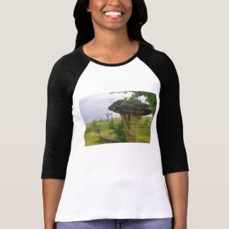 Kansas t för champinjonstendelstatspark skjorta t-shirt
