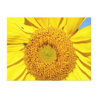 Kanvastryck - fluga på solrosen