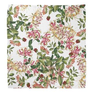 Kaprifolen blommar den blom- botaniska bandanaen scarf