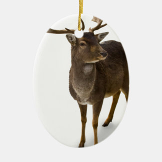 Kära Hjort! Ovalformad Julgransprydnad I Keramik
