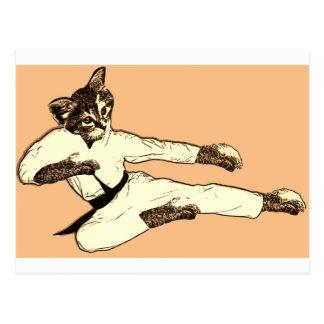 Karate Kat Vykort
