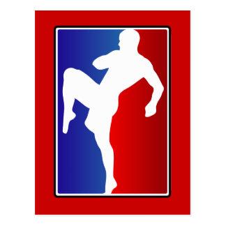 Karatekämpe för Muttahida Majlis-E-Amal Brizillian Vykort