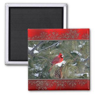 Kardinal 3097 magnet
