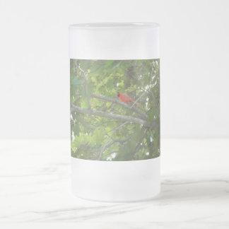 Kardinal Frostat Ölglas