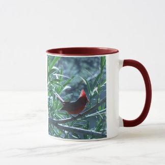 Kardinal i Oleandermugg Mugg