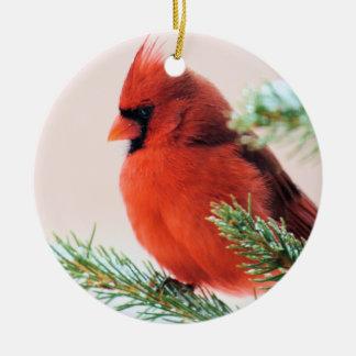 Kardinal i snö dammad av gran julgransprydnad keramik