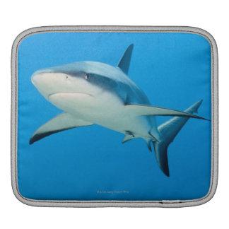 Karibisk revhaj (Carcharhinusperezien) Sleeve För iPads