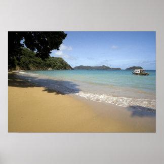 Karibisk - Tobago - strand längs Atlanten Poster