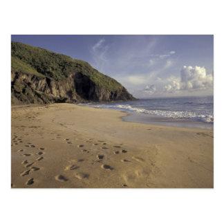 Karibiskt St. Kitts. Fotspår på Atlanten Vykort