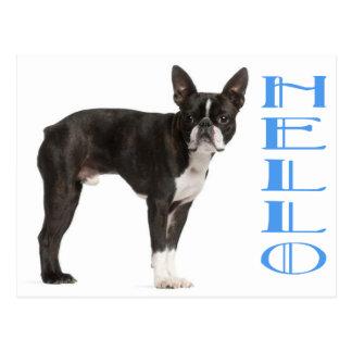 Kärlek för blått för hund för valp för hejBoston Vykort