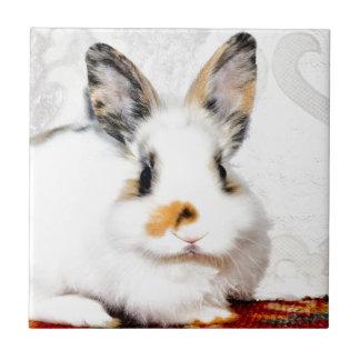 kärlek för kaninfredglädje kakelplatta