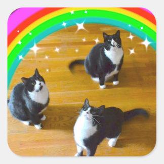 Kärlek segrar TuxedoTrio klistermärkear Fyrkantigt Klistermärke