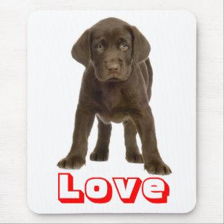 Kärlekchoklad - brun hund för valp för Labrador Musmatta