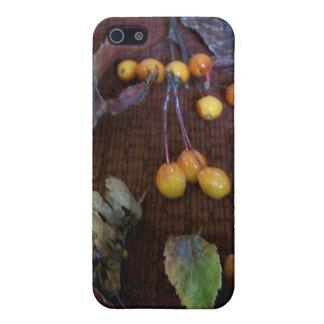 Kaskad av höst färger iPhone 5 cover